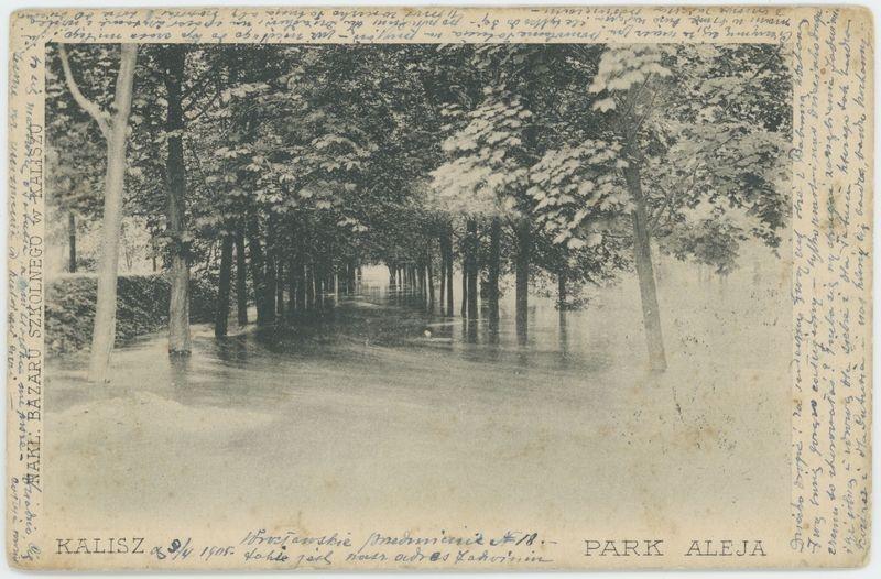 Park aleja, Kalisz