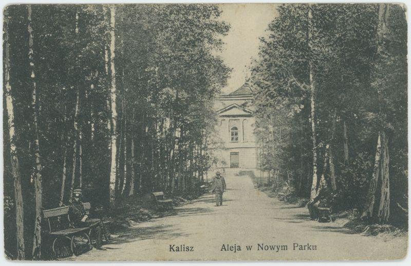 Aleja w nowym parku, Kalisz