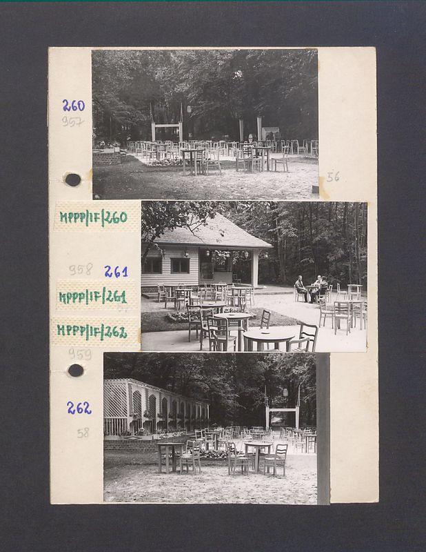 Park Miejski i kawiarnia Bractwa Kurkowego w Gnieźnie.