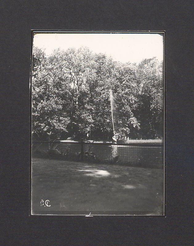 Szklane negatywy Dionizego Scholtza. Fragment Parku Miejskiego.