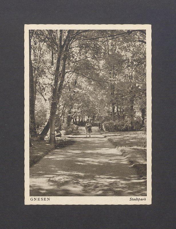 Park Miejski.